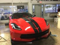 Stingray Paint Protection